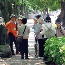 観光ボランティアガイド